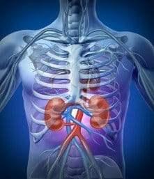 Nexium Kidney Disease